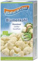 Blumenkohl NCL B