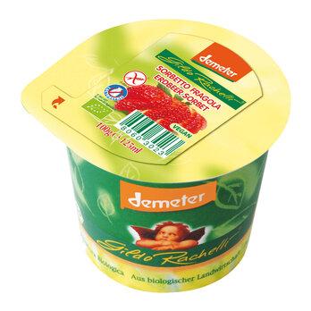 Erdbeer Sorbet INT 100g